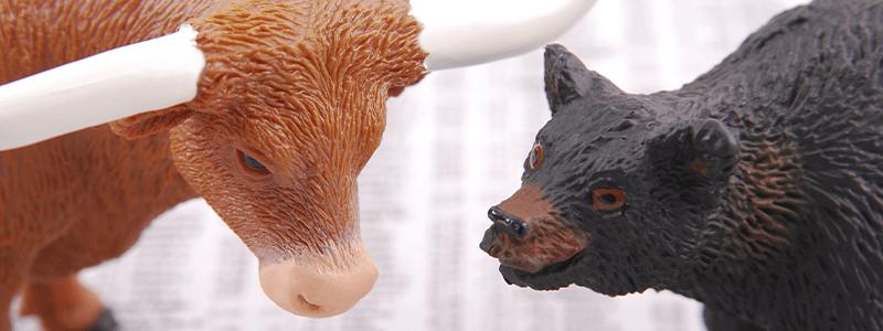 Börse Bullish Bearish